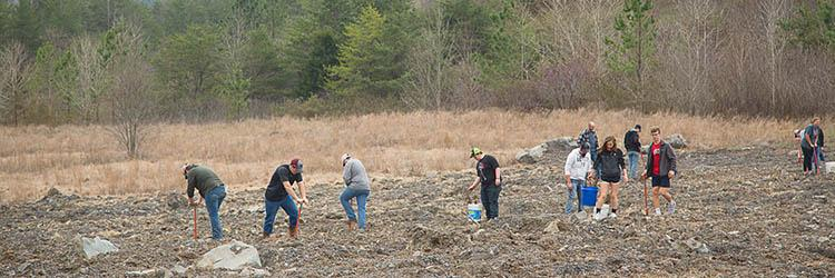 Students from UK and Whitley County High School help to reforest an old strip mine in Whitley County, Kentucky.