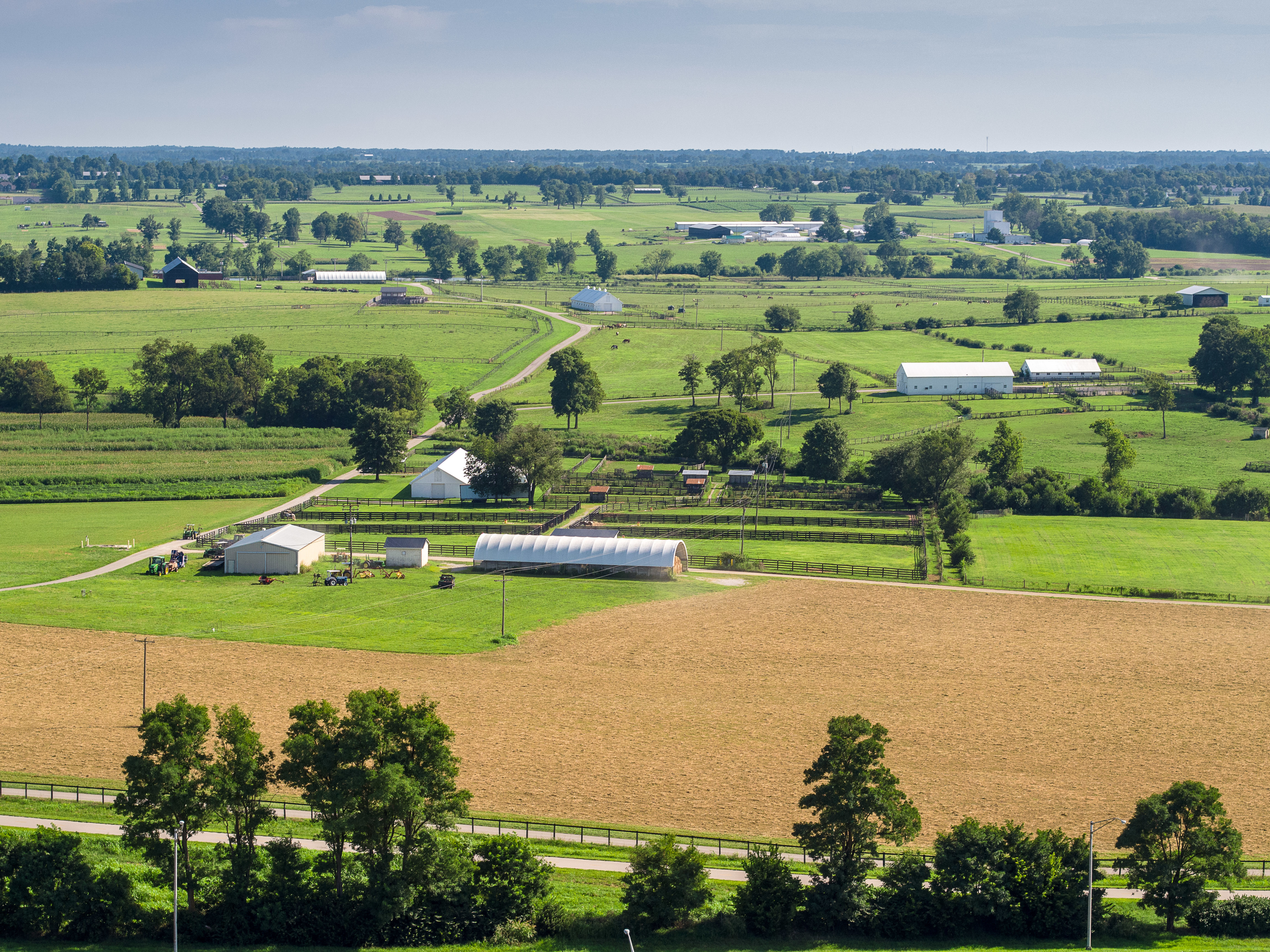 Rising Kentucky land prices make renting attractive to producers