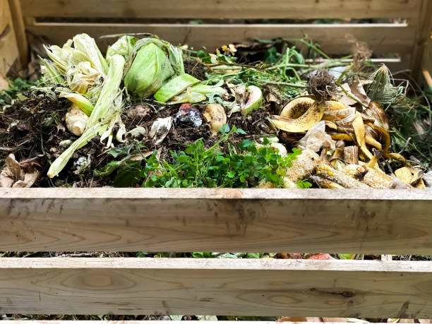 From the Ground Up - Using compost in the garden (audio)