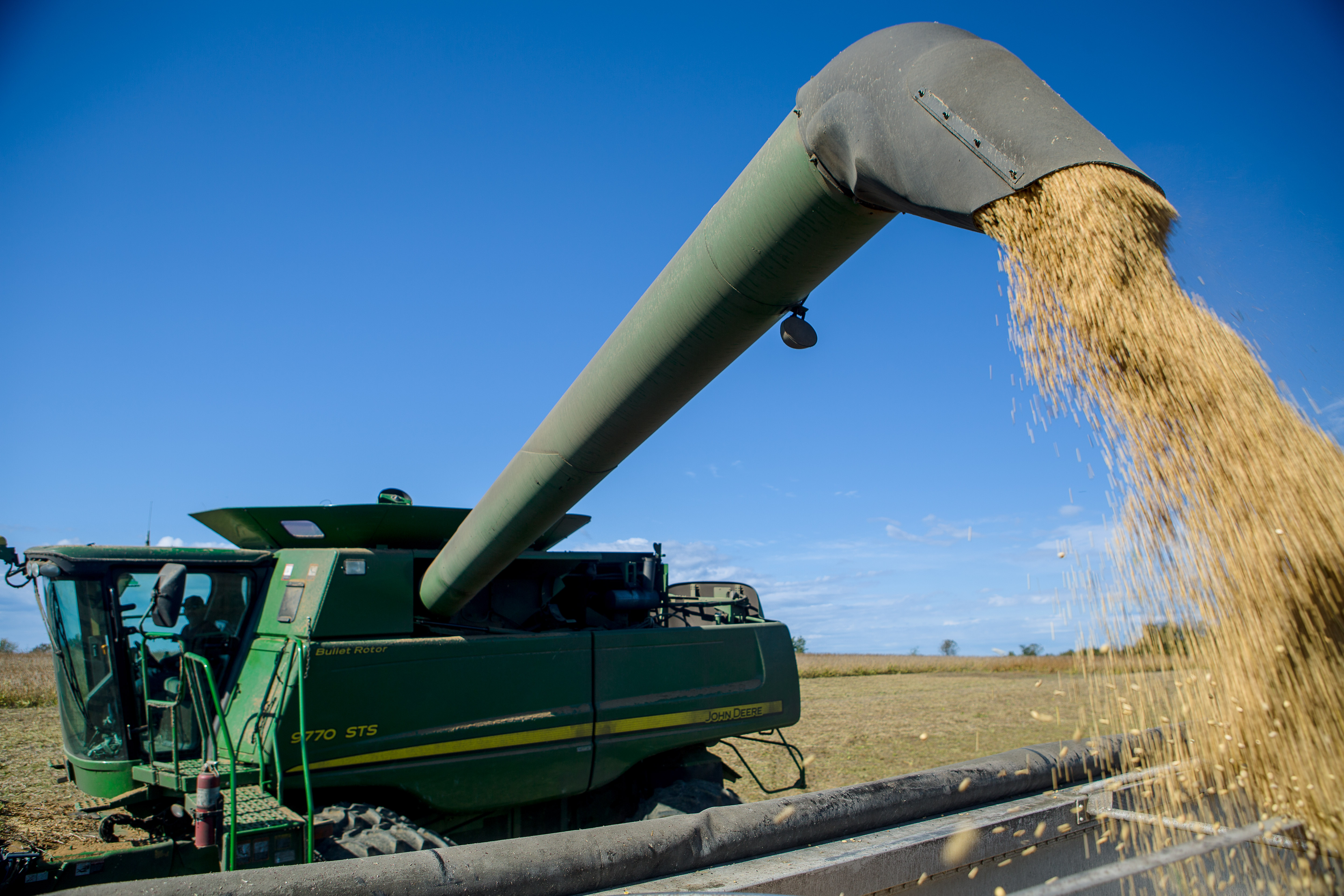 Timely soybean harvest is important to maintain yields, quality