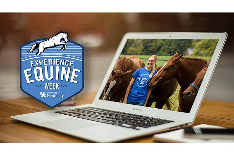 UK hosting Experience Equine Week Nov. 2-6