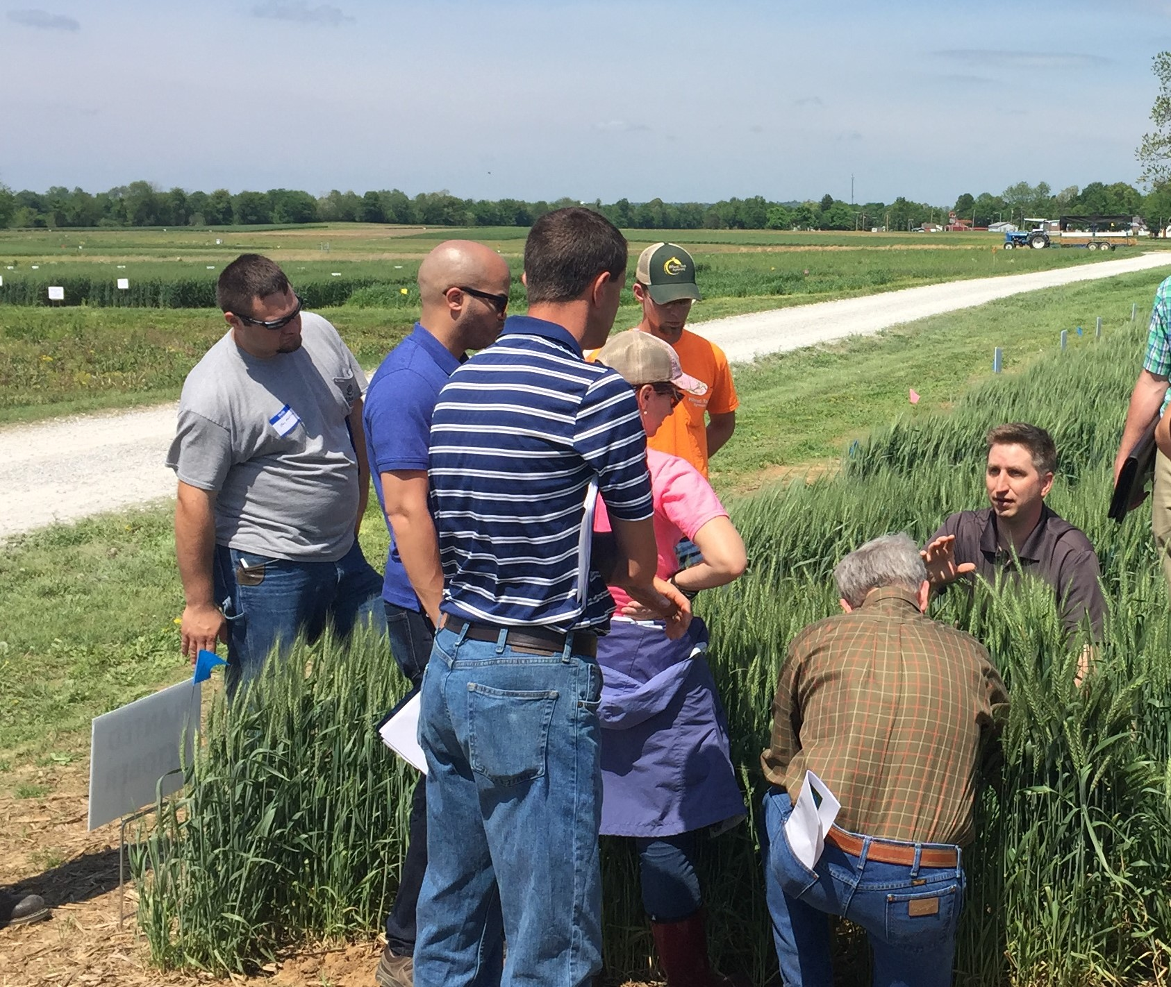 UK KATS to host field crop scouting clinic