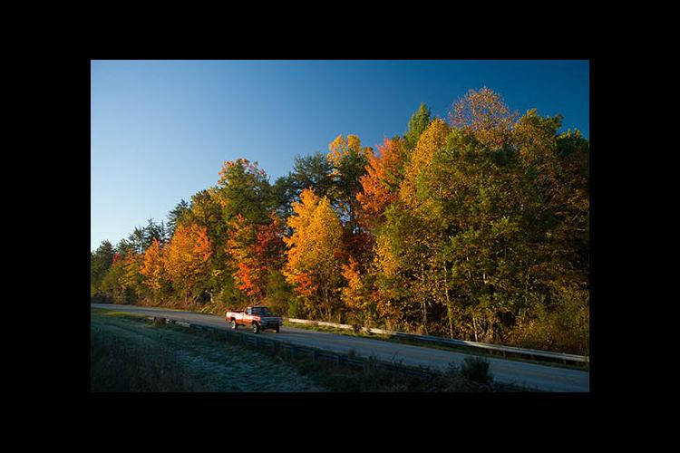 Autumn colors near the Powell County line