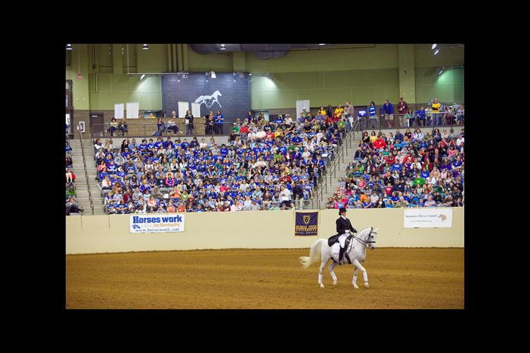 Barbara Bern of Lancaster, Ky., demonstrated the Dressage event at the 2010 Kentucky Youth Equine Festival.