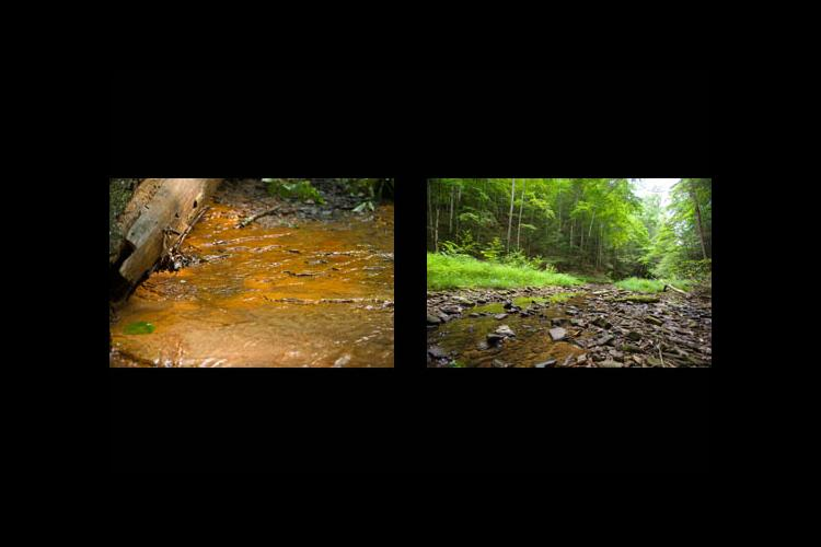 Two Kentucky streams: (l) Affected by surface mining (r) Undisturbed headwater stream in Robinson Forest