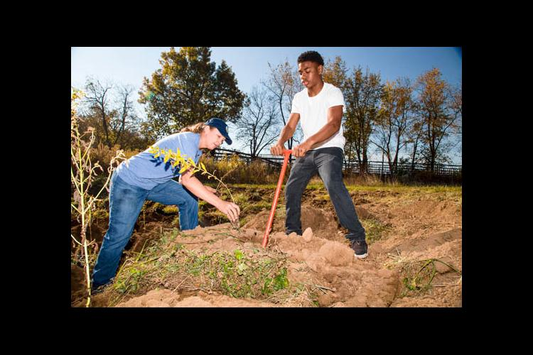 Planting native species on Spindletop Farm