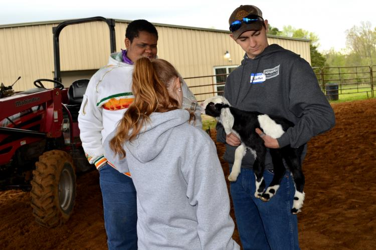 Briley Mitchell, back to camera, feeds a baby goat held by Jonathon Sink, right. DeKavion Jones looks on.