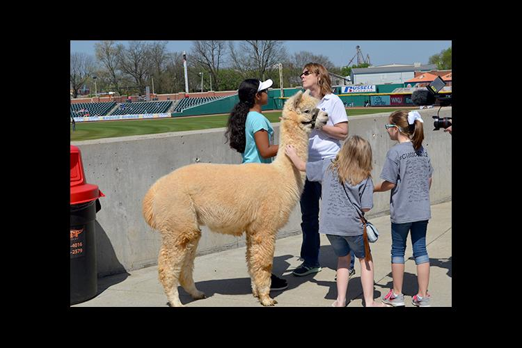 Paige Halcomb, left, and Janet Turley discuss alpaca's with two students at Ag Awareness Day at the Bowling Green Hot Rods.