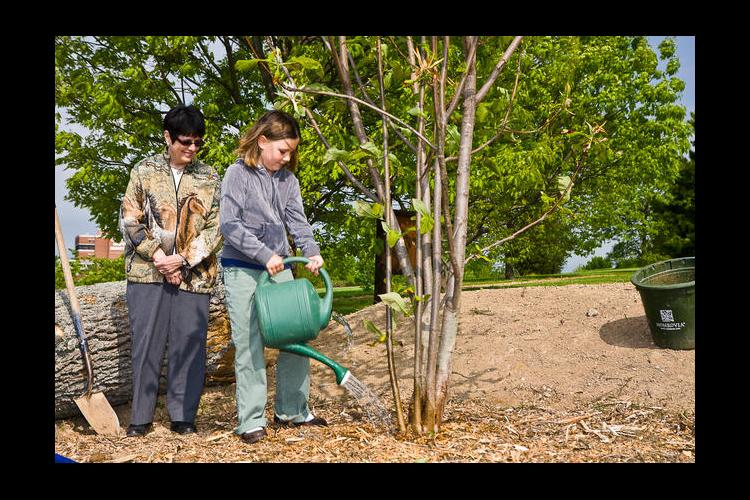 Planting a tree at a previous Arbor Day event.