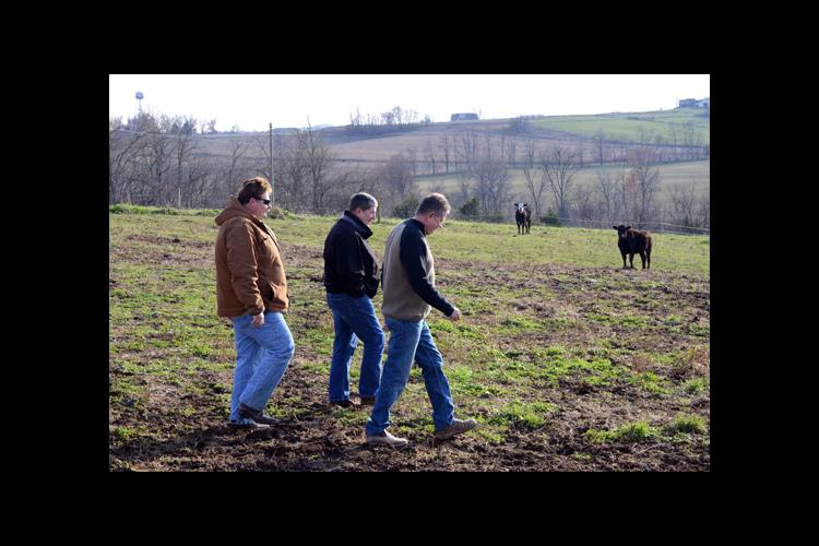 Rick Greenwell, center, Washington County ANR agent, walks with Patrick Wimsatt, left and Danny Spalding to check cattle.