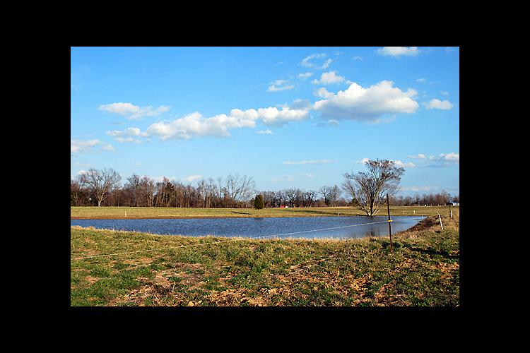 KSU aquaculture specialists will show workshop participants how get the most from their ponds.