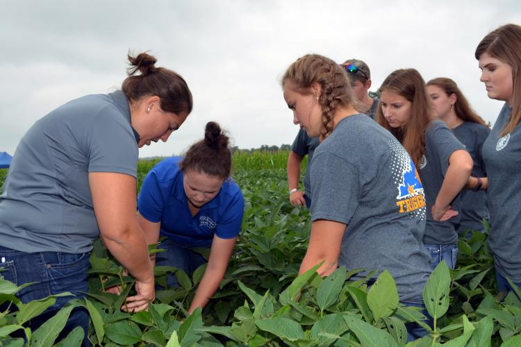 Katherine Rod, UK doctoral student, left, and Gracie Harper, UK's USDA summer intern, center, show the team from Trigg County how to growth stage soybeans. Photo by Katie Pratt, UK agricultural communications.