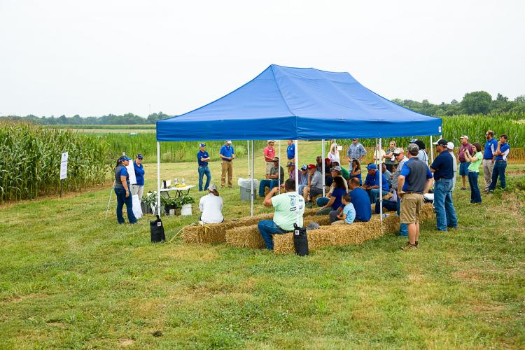 Participants at the 2017 Corn, Soybean and Tobacco Field Day.