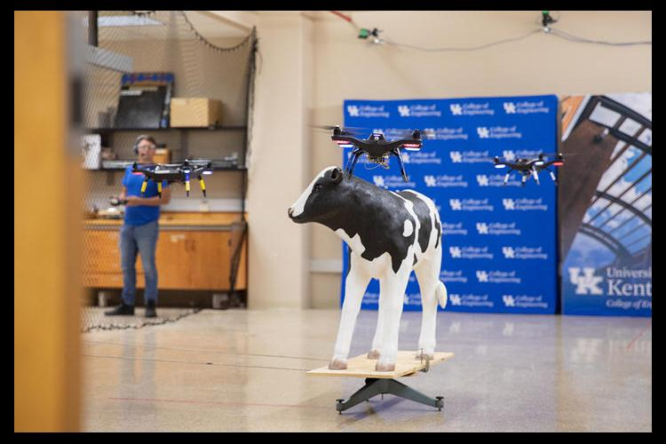 In the basement of an engineering building on UK's campus, there's a calf replica who goes by the name of Chuck. Chuck has been instrumental in perfecting the machine-learning and UAV-formation-control technology. Photo by: Eric Sanders.