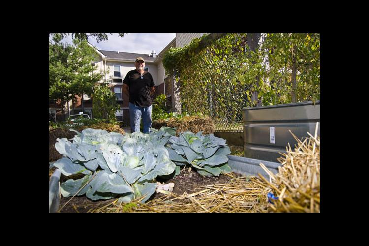 "David Thacker is ""kind of proud of the little garden here."""