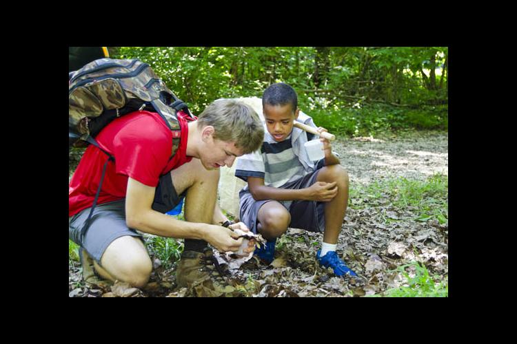 students collecting insects