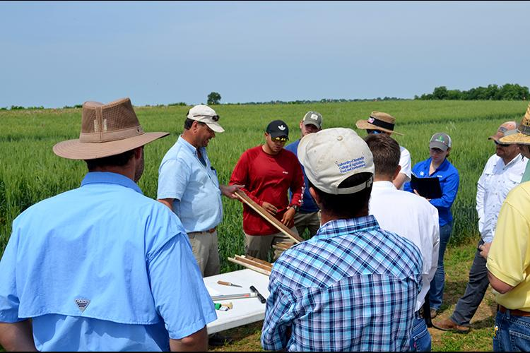 UK soil scientist Edwin Ritchey shows a soil profile to participants at a previous KATS workshop. Photo by Katie Pratt, UK agricultural communications.