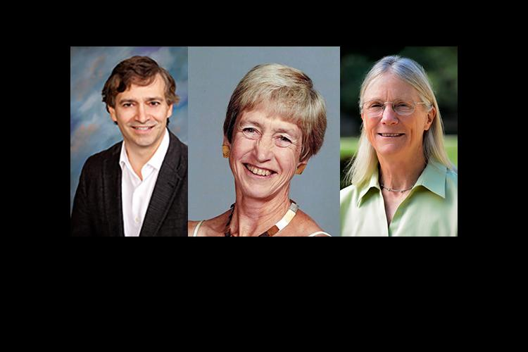 2016 UK Equine Research Hall of Fame inductees Norm Ducharme, Sue Dyson and Susan Stover.
