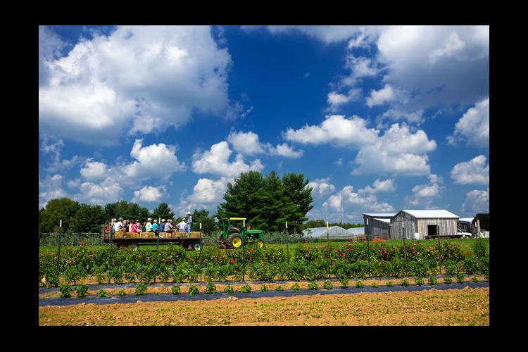 Farm, clouds, tractor, wagon and people.