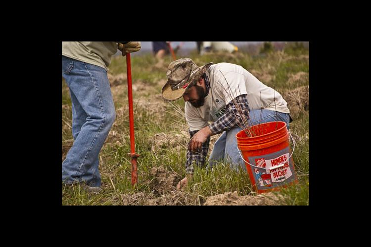 UK Landscape Architecture senior, Cameron Stone, plants a tree seedling on the land where Flight 93 crashed on 9/11. PHOTO: Carol L. Spence, UK agricultural communications specialist