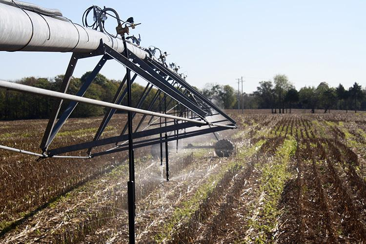 Water runs through the variable rate irrigation system installed on Trevor Gilkey's farm. Photo by Ole Wendroth, UK soil scientist.