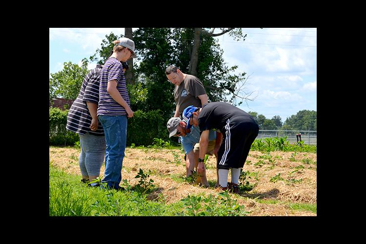 Andy Rideout, UK horticulture agent, center, helps participants at the Hugh Edward Sandefur Training Center weed their garden.