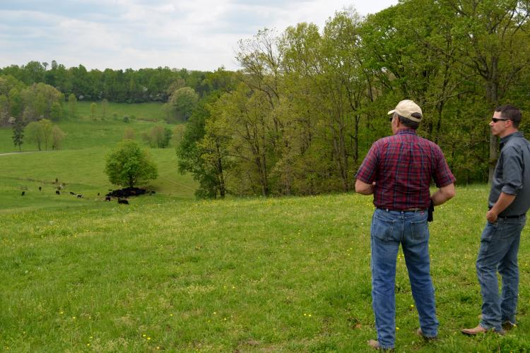 Jackson County producer Bob Hornsby, left, and David County, agriculture and natural resources extension agent, look at Hornsby's cattle and pastures during a recent visit.