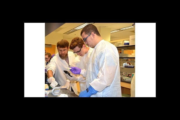 Lou Hirsch, left, helps two Garrard County High School students learn how to extract DNA in a UK lab.