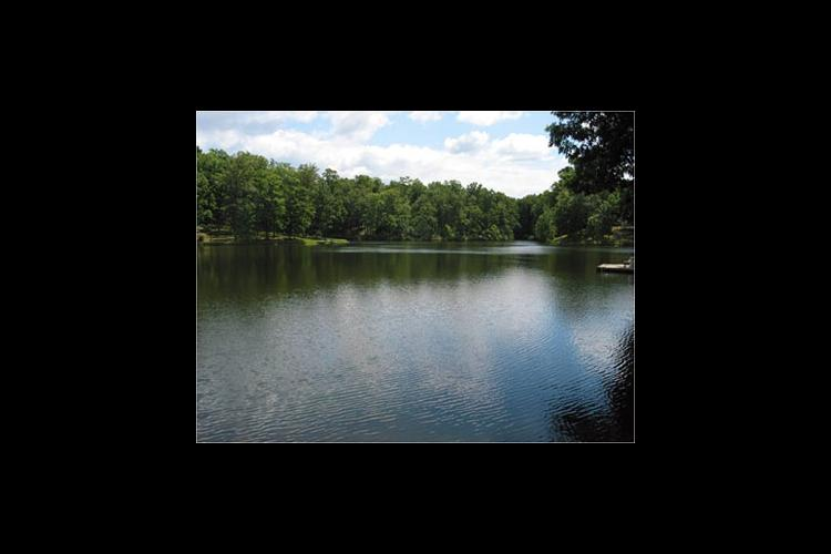 A pond in Marshall County