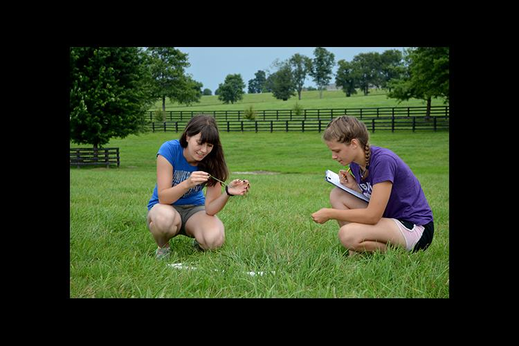 Anna Intartaglio, left, and Kelly Hagan conduct a pasture evaluation on a Central Kentucky horse farm.