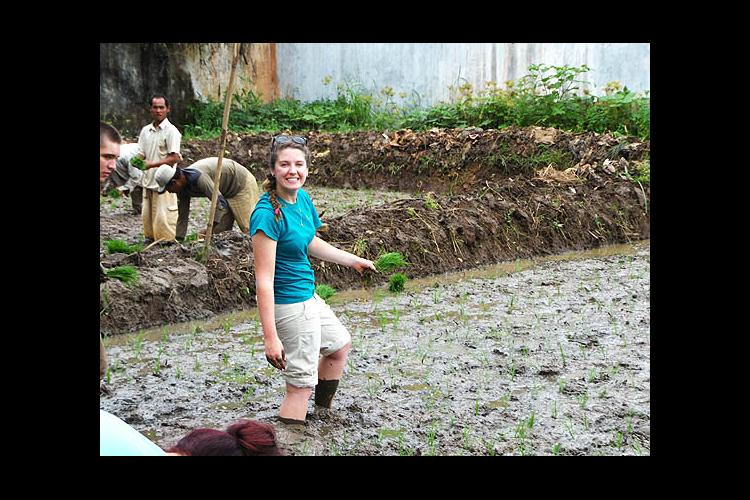 Alexis Amorese learned to plant rice in Indonesia.