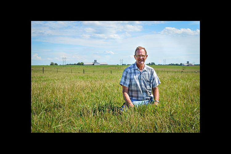 UK plant breeder Tim Phillips in a field of Lacefield MaxQ II at UK's C. Oran Little Research Farm in Woodford County.