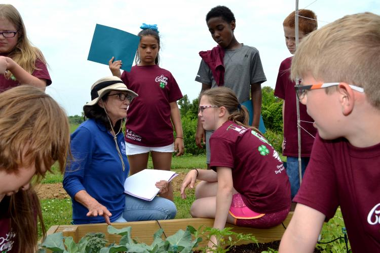 Zenaida Viloria, UK research analyst, shows students the progress of the plants in a raised bed at the UK Reseach and Education Center.