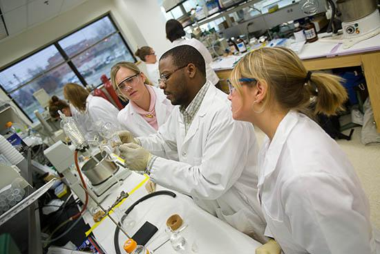 UK ag biotechnology students in a lab class.