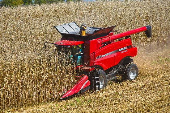 A combine in the midst of corn harvest