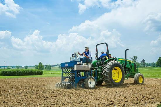 UKAg researchers planted hemp for first time in decades.
