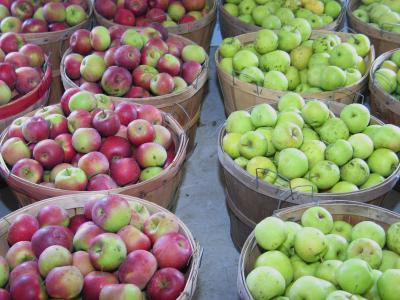 Apples in a Laurel County farmers market.