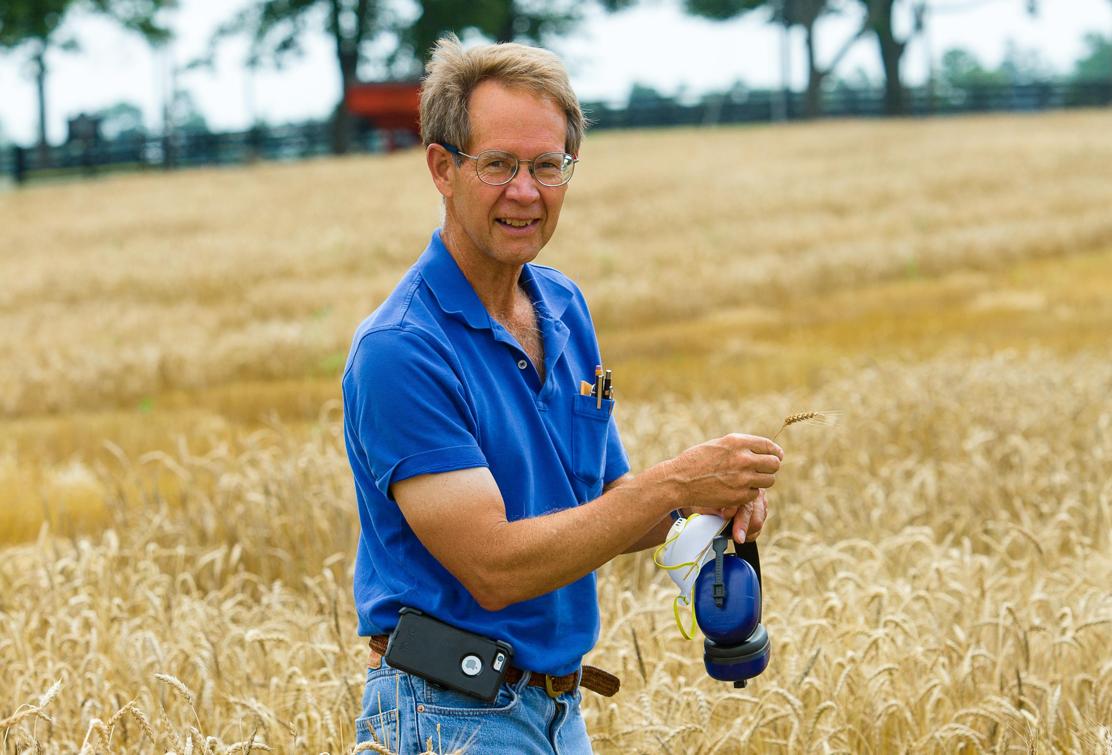 Dave VanSanford's wheat research plots for grain and straw.