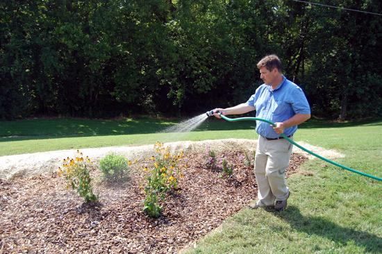 Rick Durham, UK consumer horticulture specialist waters a newly installed rain garden.