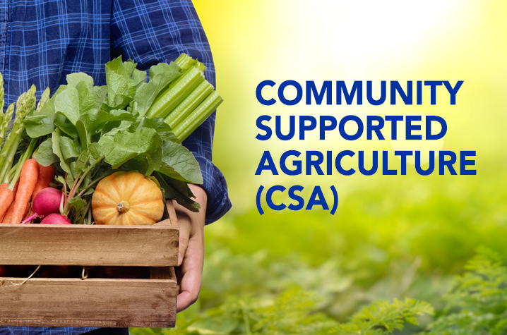 Receive local, organic produce through CSA