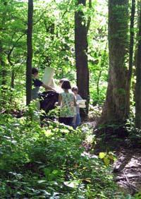 students walking in woods