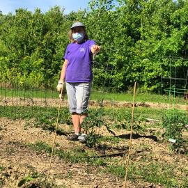 Master Gardener, Cindy George, at one of the 10 community gardens in Louisville that Jefferson County Extension manages.