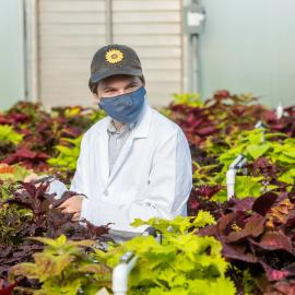 Undergraduate student Ty Rich leads a coleus cultivar trial at the University of Kentucky. Photo by Matt Barton