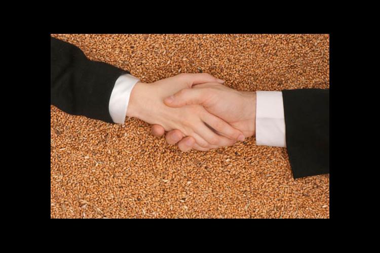 Handshake with grain in background