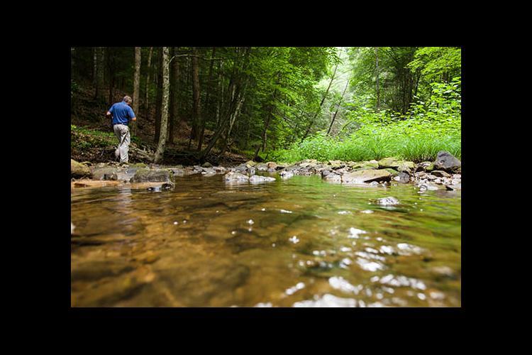 man walking by stream