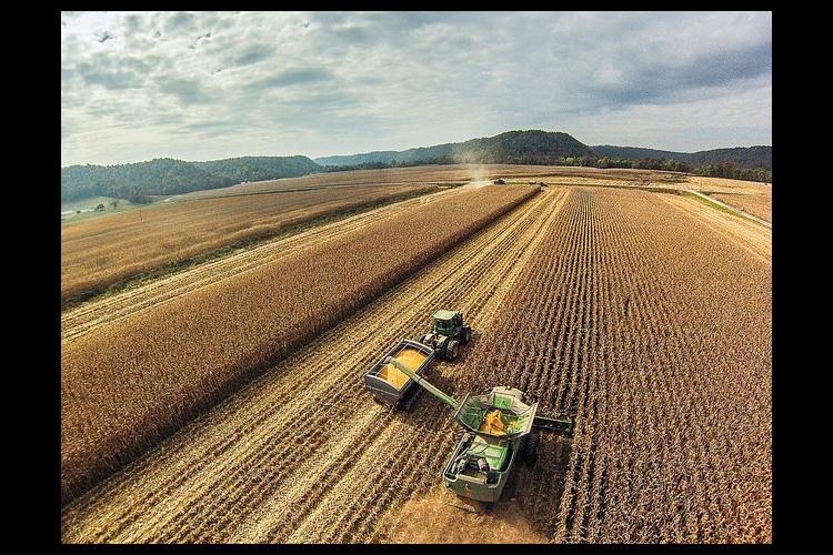 Field of grain with farm equipment.