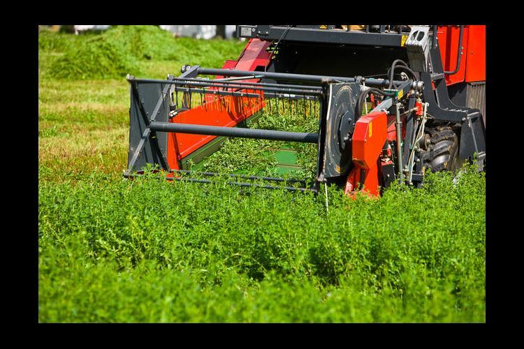 Alfalfa and farm machinery
