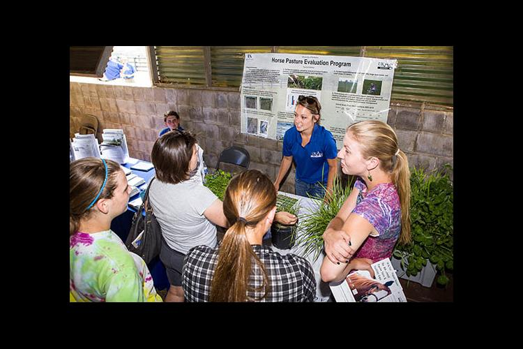 A previous UK Equine Farm and Facilities Expo