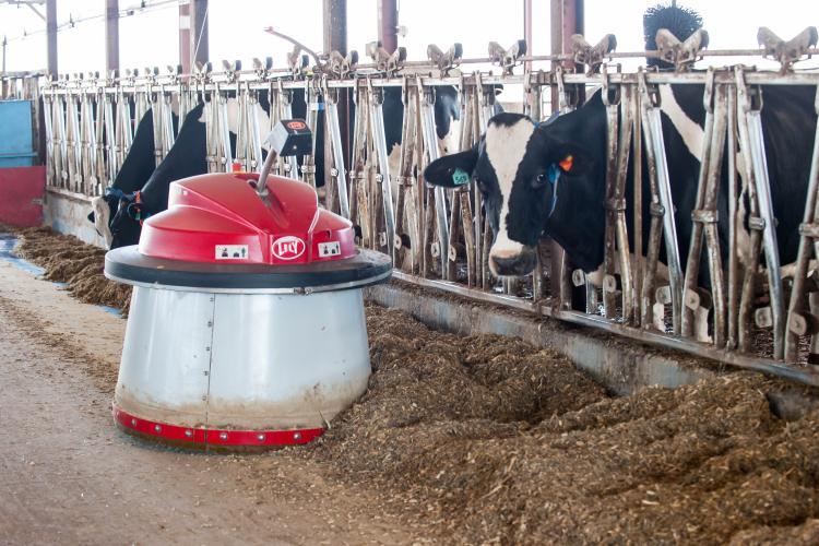 Coldstream Dairy Farm