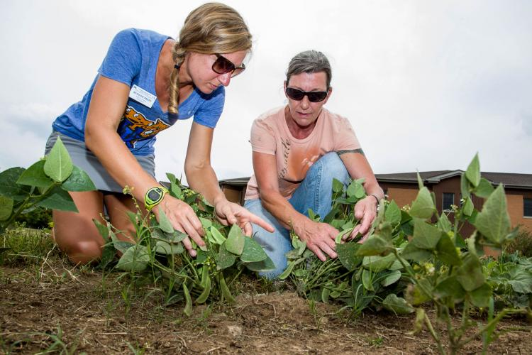 UK horticulture extension agent Bethany Pratt, left and Lisa Stull work in the garden at The Healing Place in Louisville.